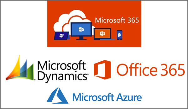 Microsoft Consulting Services Partner